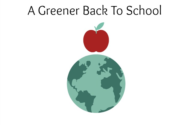 back to school green cover