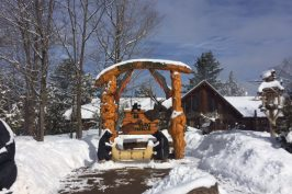 Winter Fun, Sweet Maple Delights and more at Parc Omega