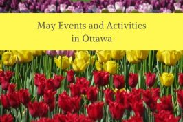 Family Activities to do in Ottawa in May