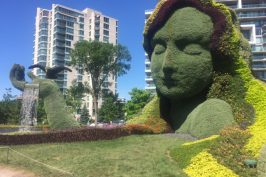 Around Ottawa: Visiting Mosaicanada
