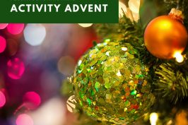 25 Days of Christmas: Activity Advent Calendar 2017